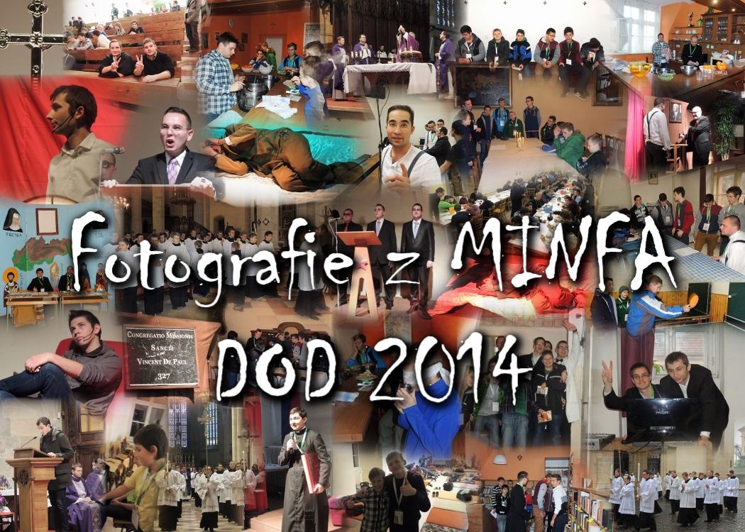 DOD MINFA 2014
